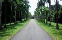 Gampaha