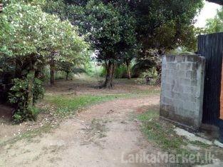 Land in Welisara Ragama for sale