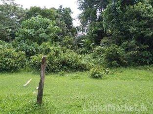 18 Perches Land in Kotugoda for sale