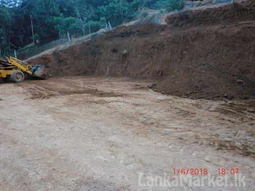 Valuable land In Pelmadulla