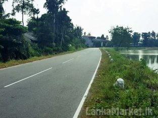 Bare Land for Sale at Thalawathugoda.