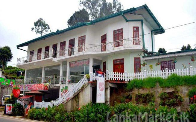 Commercial Property in Seetha Eliya, Nuwara Eliya for sale