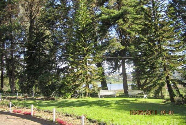 Nuwara Eliya Land & Bungalow for Sale