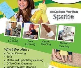 sofa Shampoo cleaning service