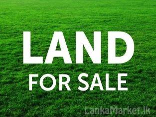Land for sale in Negombo Kandawala