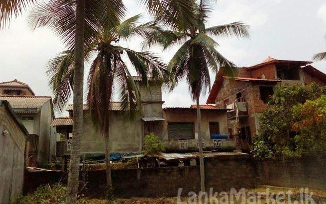 Land in Nittambuwa City Limit for Sale