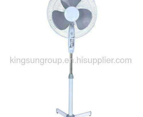 stend fan