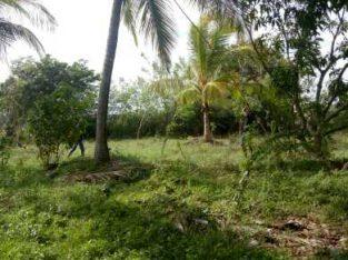 land in anurdhapura