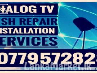 Dialog TV Dish Repair Installation Services