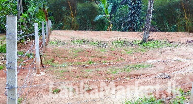 බදුල්ල, හාලිඇල පර්චස් 11 ඉඩම් 3ක් විකිණීමට / 3 x 11 Perches Lands Hali-Ela, Badulla, Sri Lanka