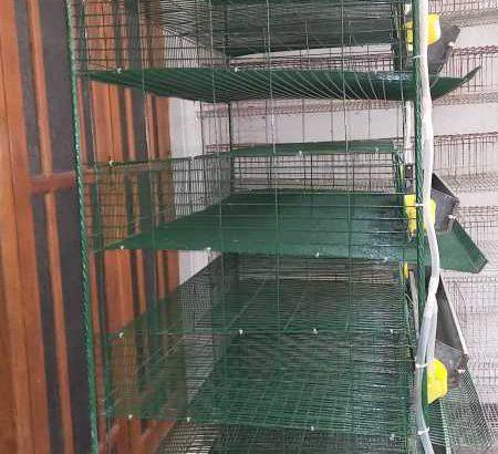 quail cage