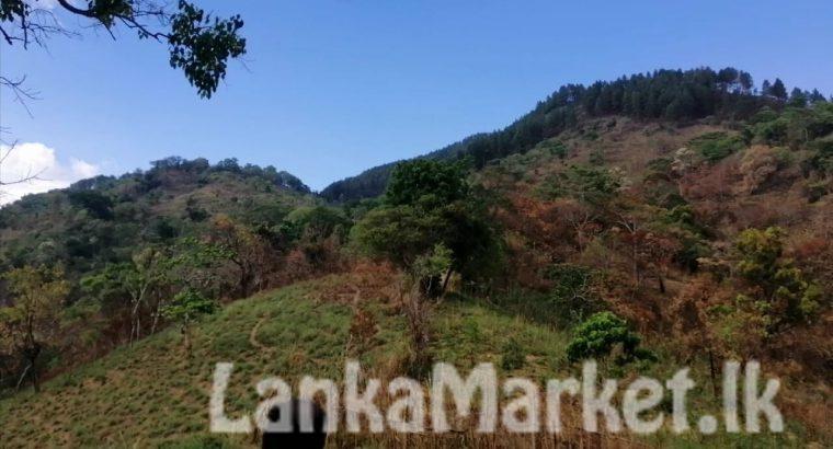 Tourism Camping Land