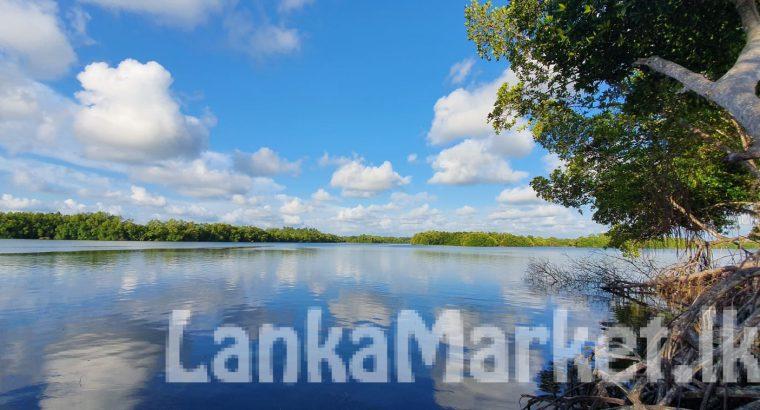 Amazing 270 perch Riverland Bentota