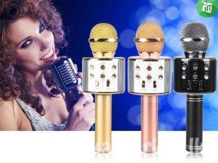 Wireless Microphone Speaker / Wireless Microphone Hifi Speaker