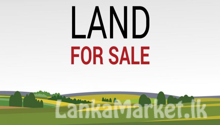 Residential Land for Sale in Ratnapura