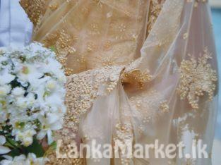 Bridal Saree dress used
