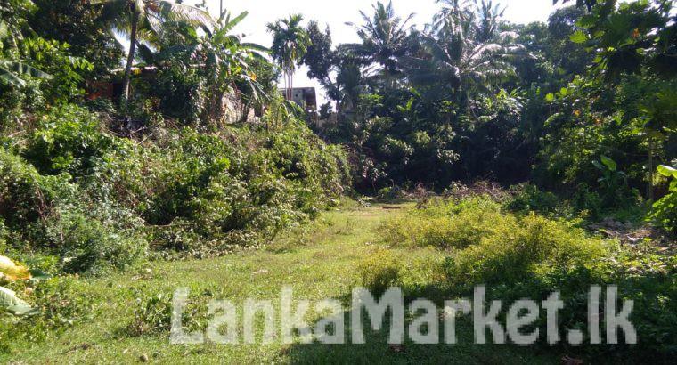 Land for sell Panadura