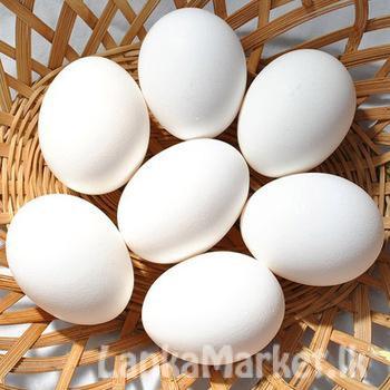 White Farm eggs